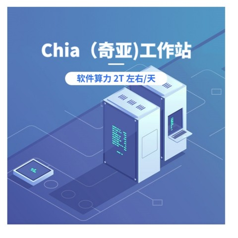 AMD R7-5800X Chia 奇亚工作站 2T/天 区块链